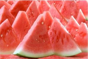 vandmelon festival