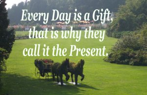 every day is a gift - the present